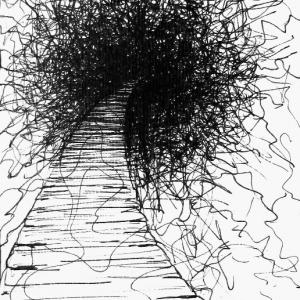 path-17x22cm-ink